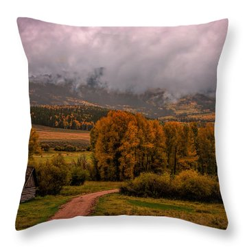 Throw Pillow featuring the photograph Beyond The Road by Ken Smith