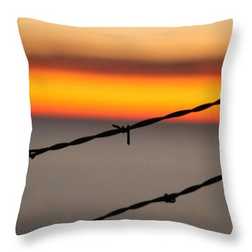 Beyond The Wire Throw Pillow