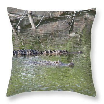 Bffs Iv Throw Pillow