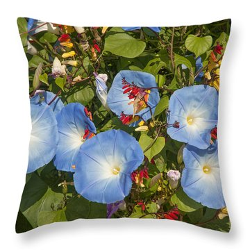 Bhubing Palace Gardens Morning Glory Dthcm0433 Throw Pillow