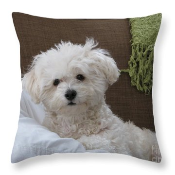 Molly 2 Throw Pillow by Michael Krek