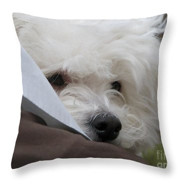 Molly Throw Pillow by Michael Krek