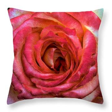 Bicolor Rose Throw Pillow