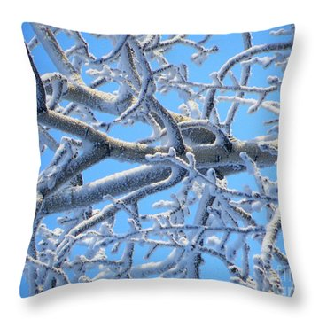 Bifurcations In White And Blue Throw Pillow by Brian Boyle