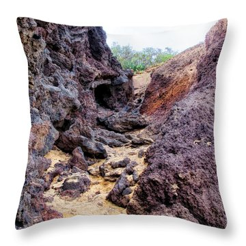 Big Beach 41 Throw Pillow