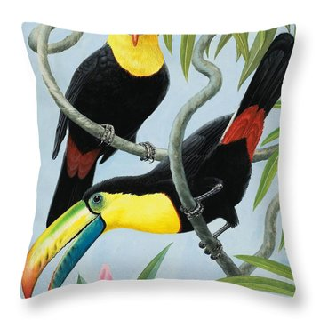 Big-beaked Birds Throw Pillow by RB Davis