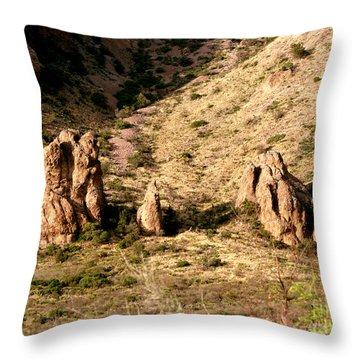 Big Bend Nativity Throw Pillow