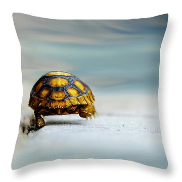Big Big World Throw Pillow by Laura Fasulo