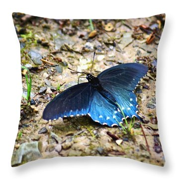 Big Blue Throw Pillow by Marty Koch