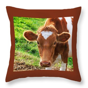 Big Bossy Throw Pillow by Joy Nichols