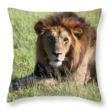 Big Boy All Profits Go To Hospice Of The Calumet Area Throw Pillow