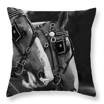 Big Boys Throw Pillow by Denise Romano