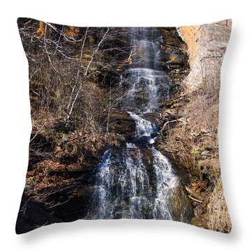 Big Bradley Falls 2 Throw Pillow by Chris Flees
