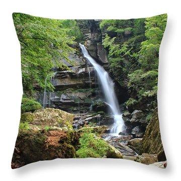 Big Bradley Falls Throw Pillow