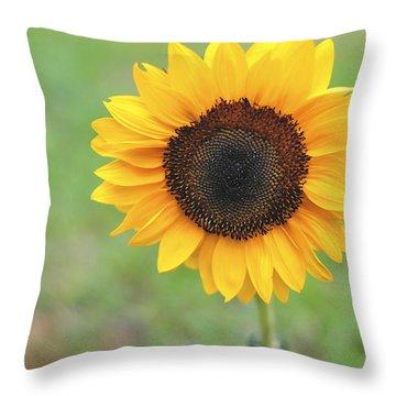 Big Bright Yellow Colorful Sunflower Art Print Throw Pillow
