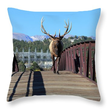 Big Bull On The Bridge Throw Pillow