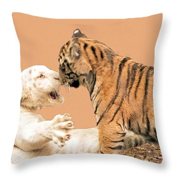 Throw Pillow featuring the photograph Big Cat Spat Nose To Nose by Constantine Gregory
