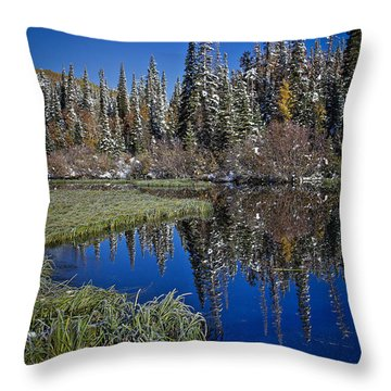 Big Cottonwood Canyon  Throw Pillow by Richard Cheski