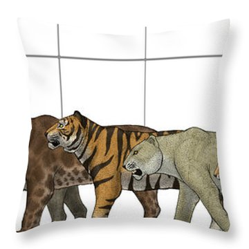 Big Felines Size Chart Throw Pillow by Vitor Silva