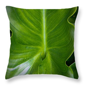 Throw Pillow featuring the photograph Big Green by Aaron Berg