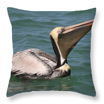 Throw Pillow featuring the photograph Big Gulp  by Christy Pooschke