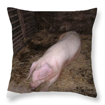 Big Pig Throw Pillow