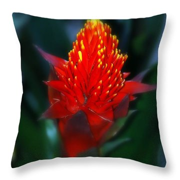 Big Red Throw Pillow by George Mount