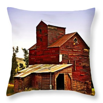 Big Red Grain Elevator Throw Pillow by Marty Koch