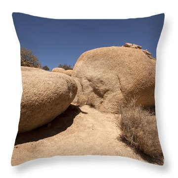 Big Rock Throw Pillow by Amanda Barcon