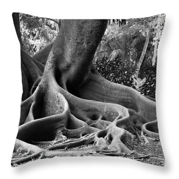 Big Roots Throw Pillow by Judy Wolinsky