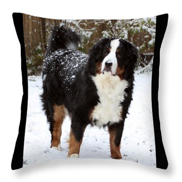 Snow Happy Throw Pillow by Patti Whitten