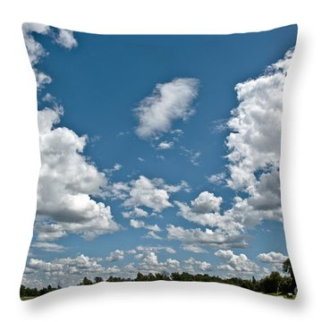 Big Sky Throw Pillow by Cheryl Baxter