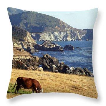 Big Sur Cow Throw Pillow