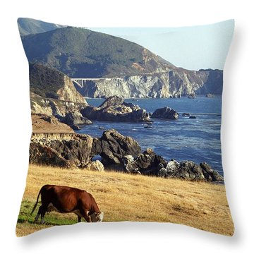 Big Sur Cow Throw Pillow