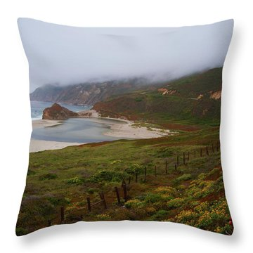 Big Sur Throw Pillow by Tom Kelly