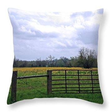 Big Texas Sky Throw Pillow