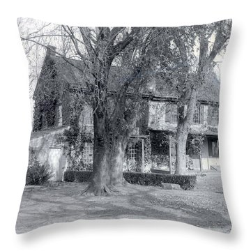 Big Trees Throw Pillow