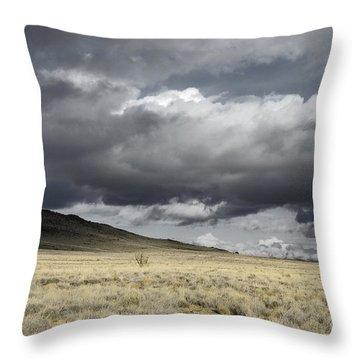 Big Volcano Field Throw Pillow by Andrea Hazel Ihlefeld