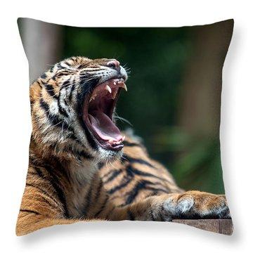 Big Yawn Throw Pillow by Ray Warren