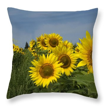 Big Yellow Sunflowers In A Michigan Field Throw Pillow by Diane Lent