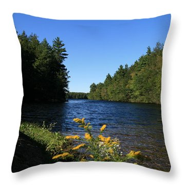 Bigelow Hollow  Throw Pillow by Neal Eslinger