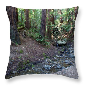 Bigfoot On Mt. Tamalpais Throw Pillow