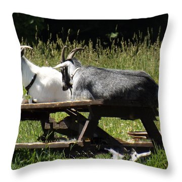 Billy Goats Picnic Throw Pillow by Brenda Brown