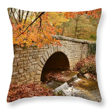 Biltmore Estate Throw Pillow
