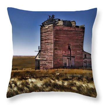 Throw Pillow featuring the painting Bingo Grain Co by Muhie Kanawati
