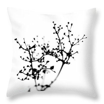 Biochemistry Of Winter 2 Throw Pillow
