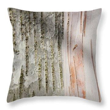 Birch Bark 11 Throw Pillow by Mary Bedy