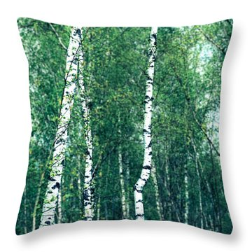 Birch Forest - Green Throw Pillow by Hannes Cmarits