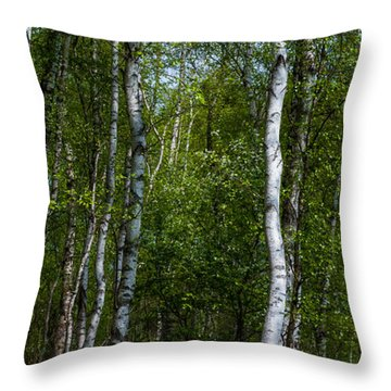Birch Forest In The Summer Throw Pillow by Hannes Cmarits