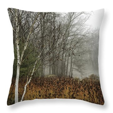 Birch In Winter Throw Pillow